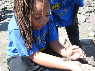 girl beach crab