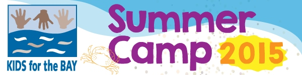 summercamp2015_banner_withlogo_600x150 (2)JPG