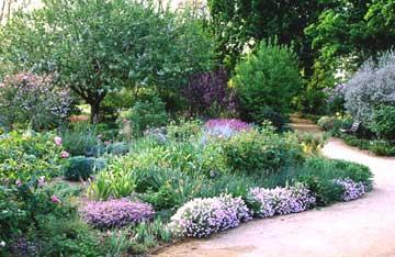 arboretum_garden